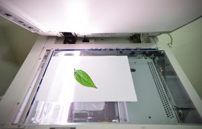 Reduce print costs